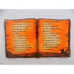 Livre Psaume 23